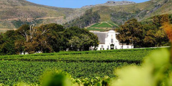 Dél-Afrikai bor túrát szervez az István Nádor Borlovagrend