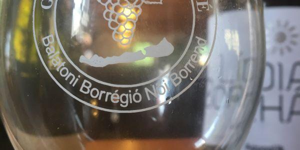 Borrendek országos ünnepségén - BORlovagok