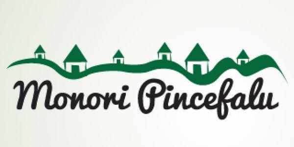 Önálló honlapja van a Monori Pincefalunak