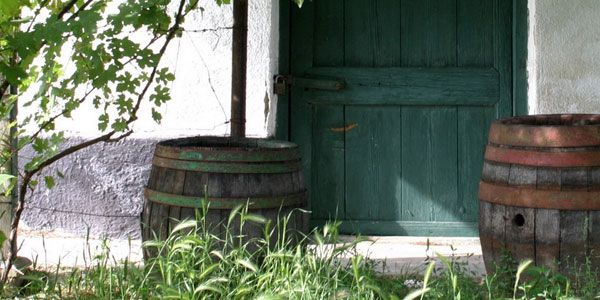A magyarországi borrendek története